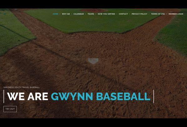 Gwynn Baseball Homepage 600x409 - Portfolio