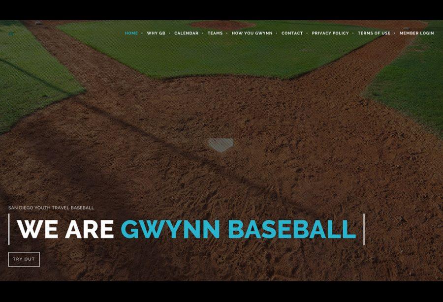 Gwynn Baseball Homepage 900x614 - Gwynn Baseball
