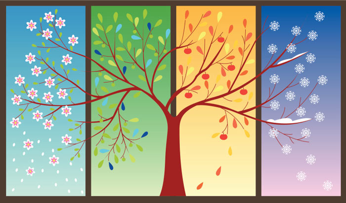Seasons Tree - 6 EASY STEPS TO PLAN A SEASONAL MARKETING CAMPAIGN